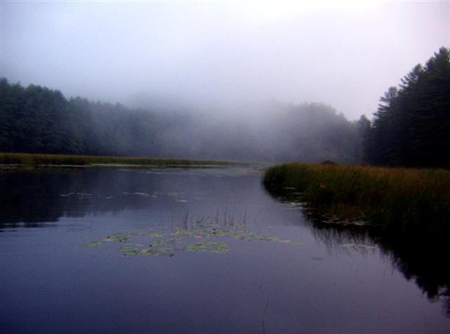 Burnt Pond